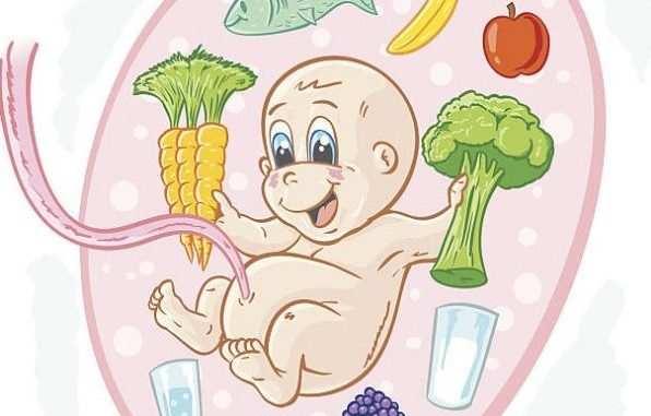 развитие беременности