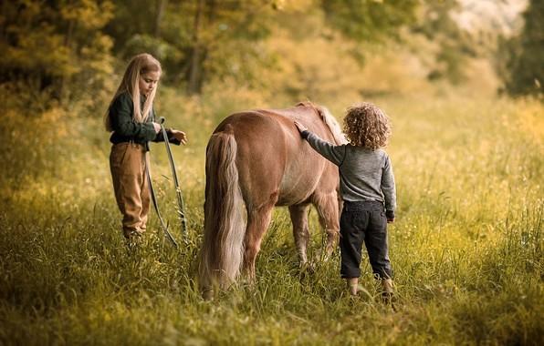 дети и лошадь