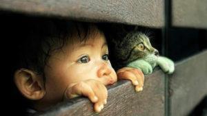 Смешные высказывания детей: кот в холодильнике