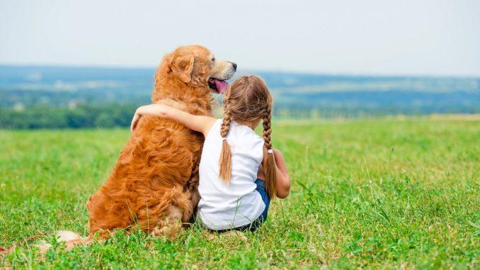 собака снижает стресс у детей