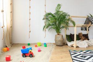 Какие комнатные растения опасны для детей и что делать если ребенок отравился